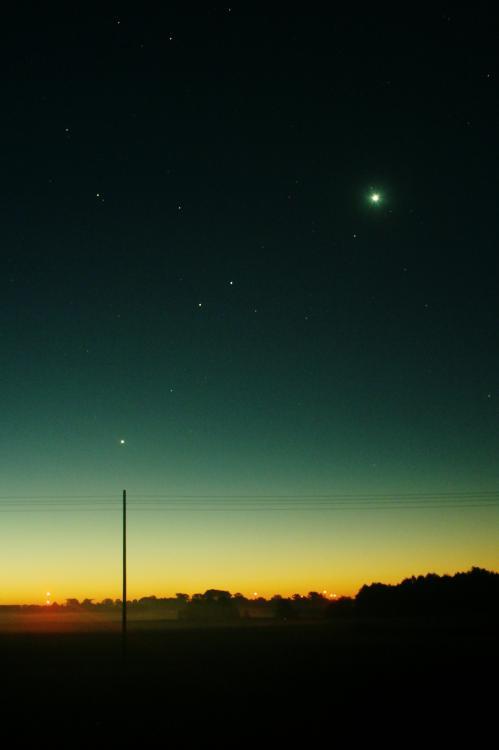 Venus_3.jpg
