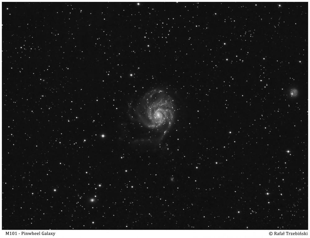M101-L_1_small1.jpg