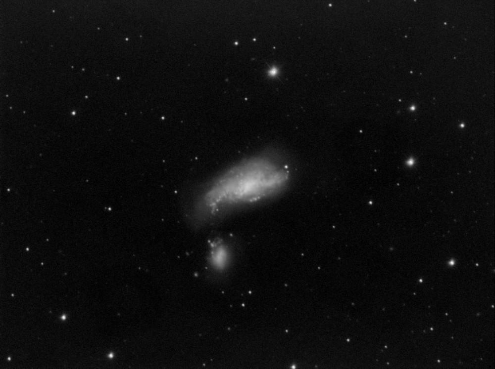 NGC4490.jpg