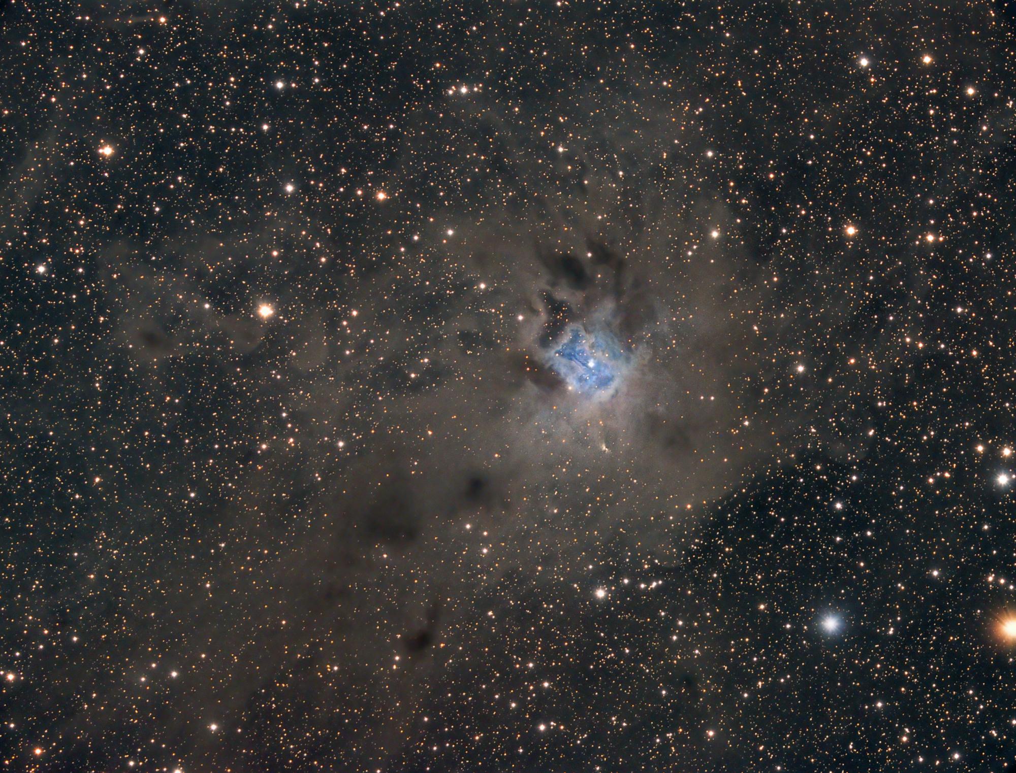 NGC7023 LRGB  jpg.jpg