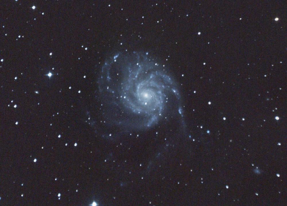 A_M101_24.08.16_2.crop.jpg