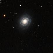 NGC3147.jpg