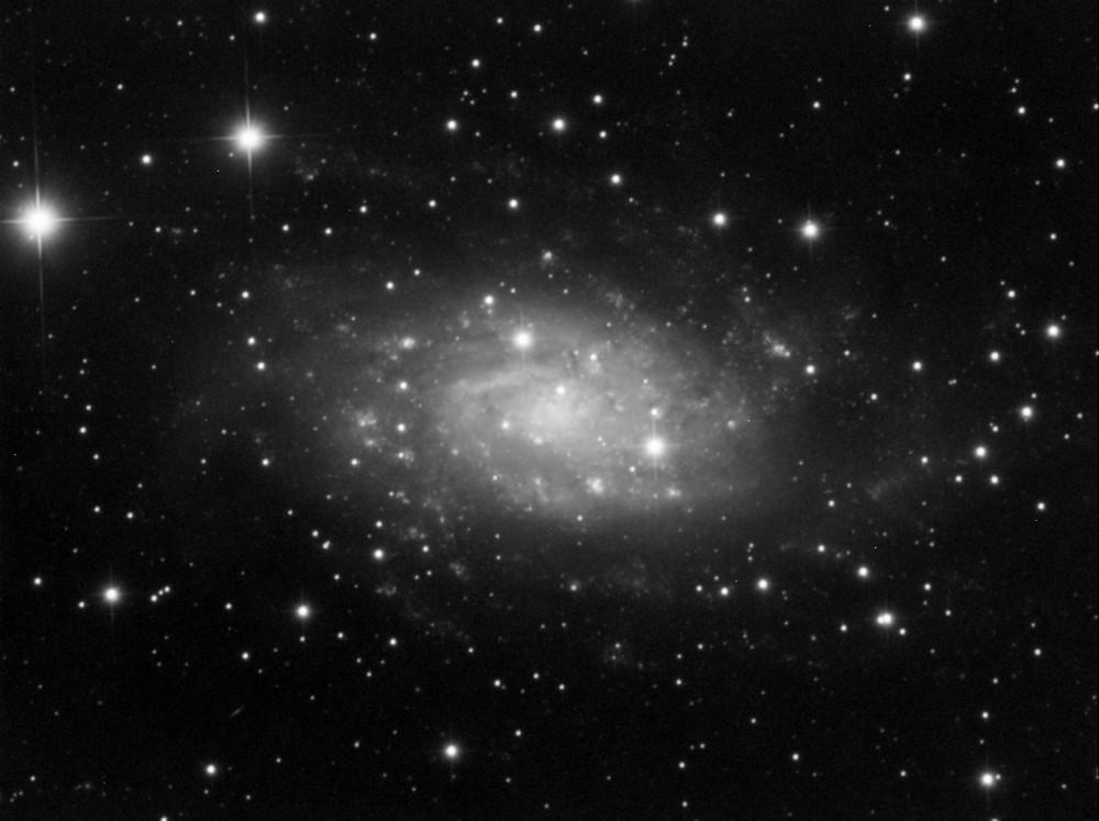 NGC2403.jpg