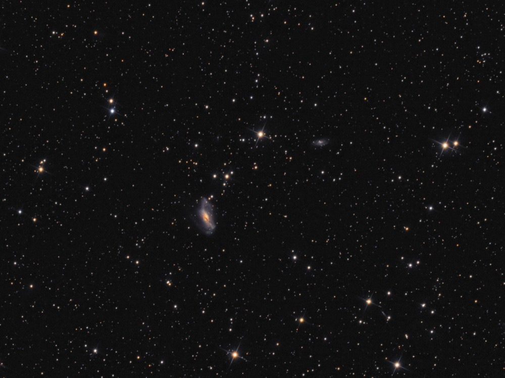 !Final_NGC2146_LRGB_v3_1080px.thumb.jpg.89872e70b46592cf3939cff030208c4c.jpg