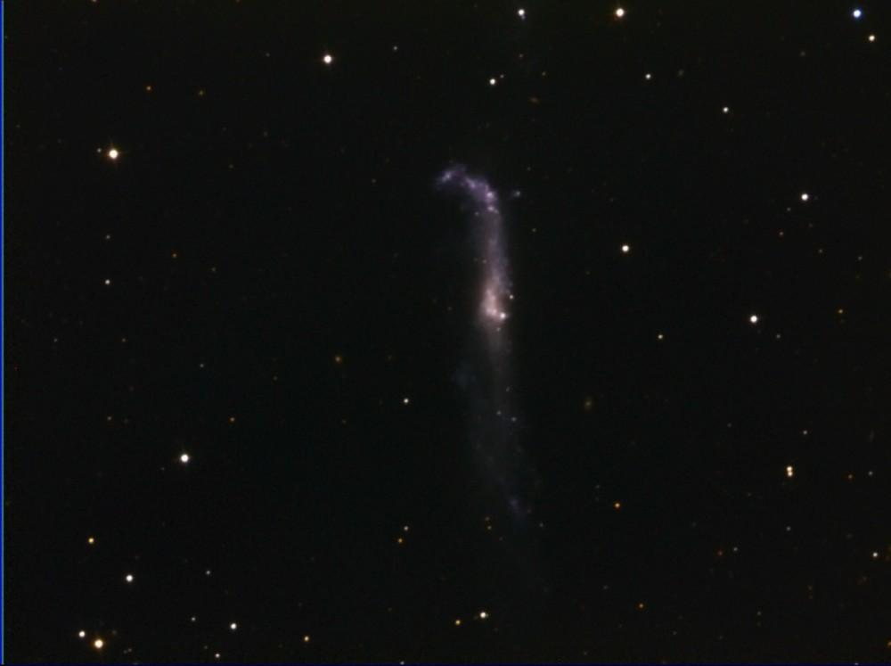 NGC4656.thumb.jpg.926ccf2aefb37ac807798f38a07b0772.jpg