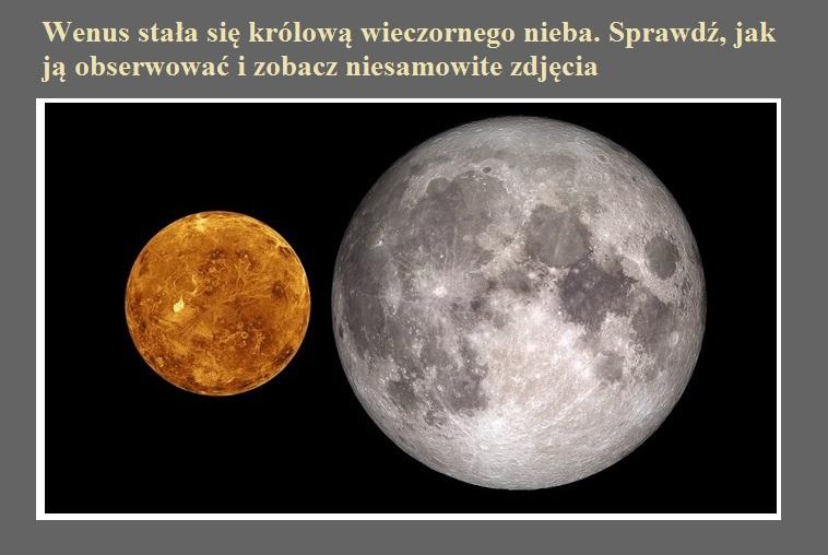 Wenus stała się królową wieczornego nieba. Sprawdź, jak ją obserwować i zobacz niesamowite zdjęcia.jpg
