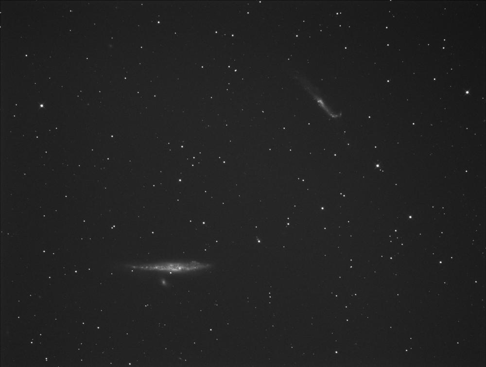 5ade0d6f87a75_NGC4631A.thumb.png.0523a1040b99f22ed97ca9902a878adb.png