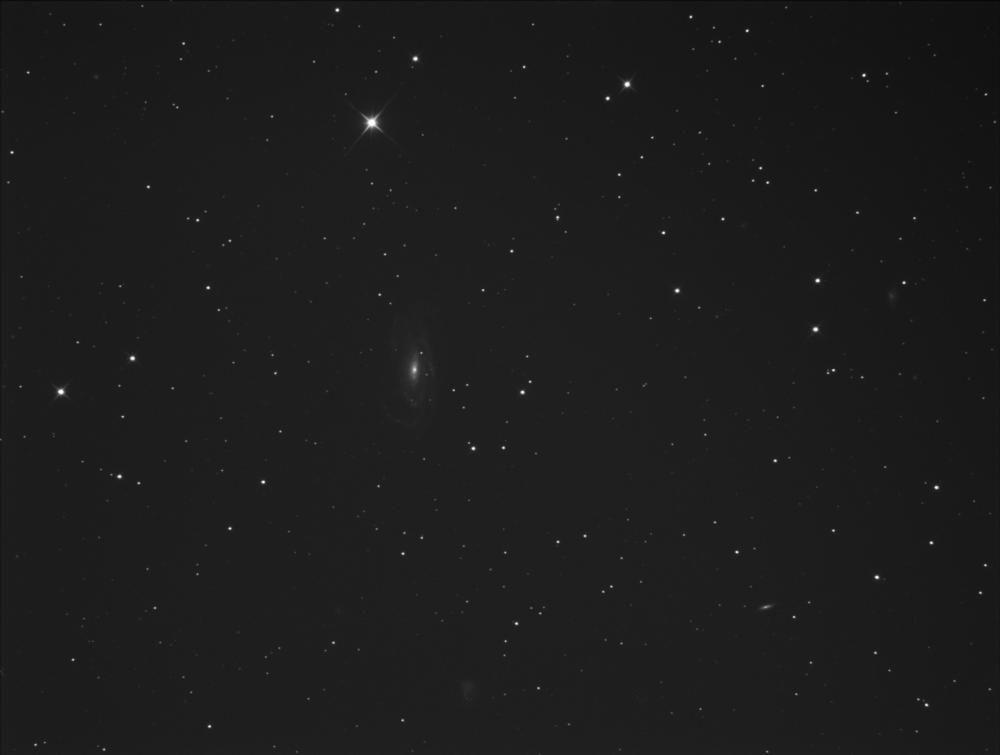 840319901_NGC5033.thumb.png.b95321a7246d0b0fe3442ad6f532b868.png