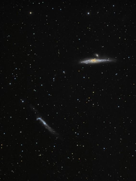 NGC4631-RGB (2)aaa.jpg