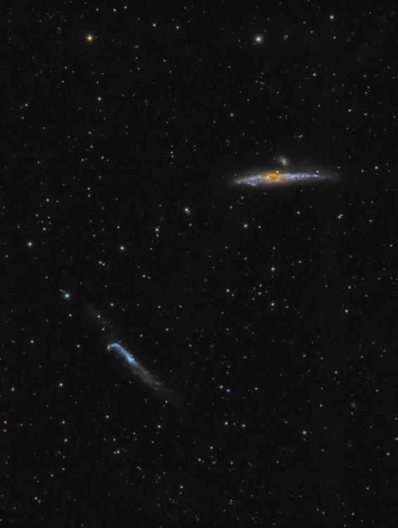 NGC4631-LRGBaa.thumb.jpg.1b0d0ea2ca27bd08610042dd5fcba6ca.jpg