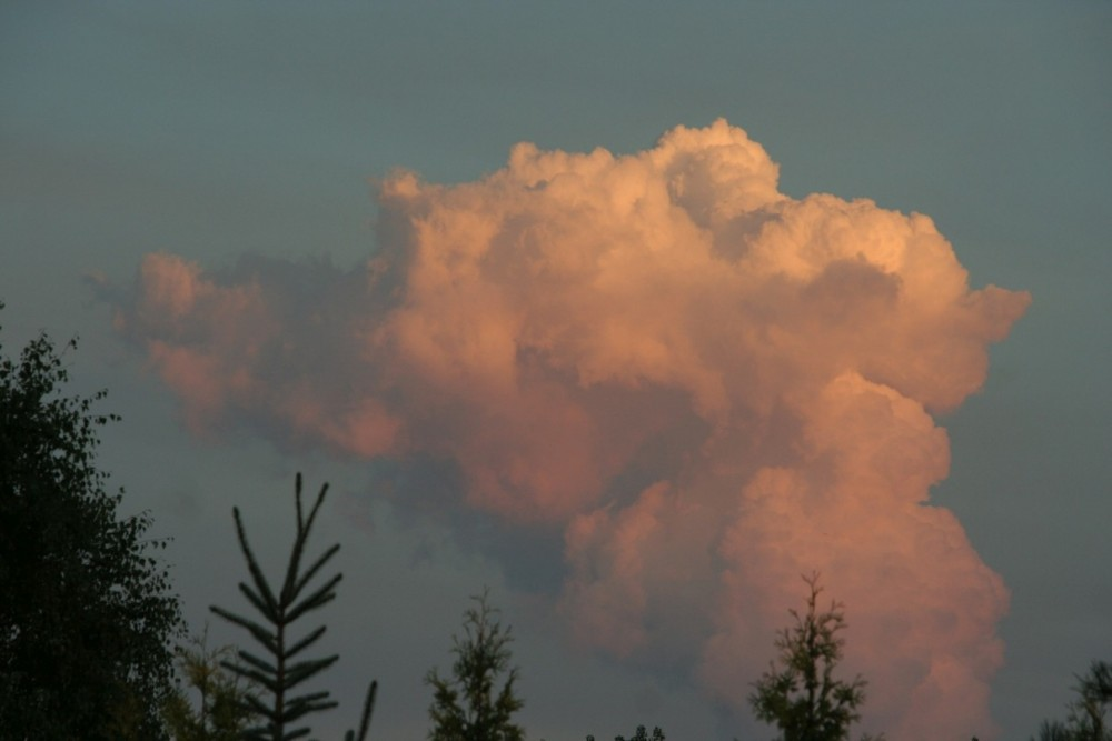 Cloud1.thumb.jpg.3f40d9bec18db2b6f75093eed19b67cf.jpg