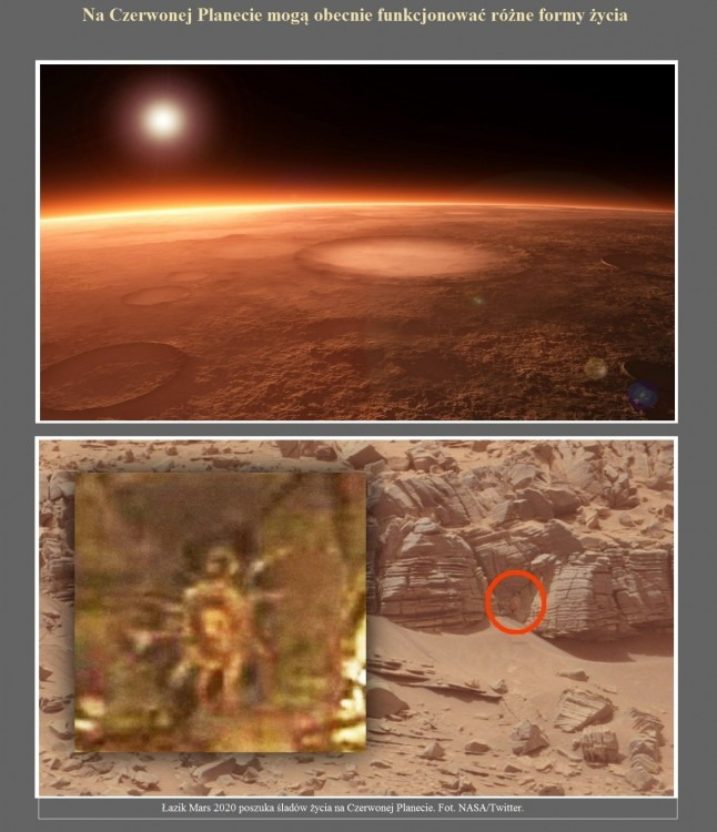 Na Czerwonej Planecie mogą obecnie funkcjonować różne formy życia.jpg