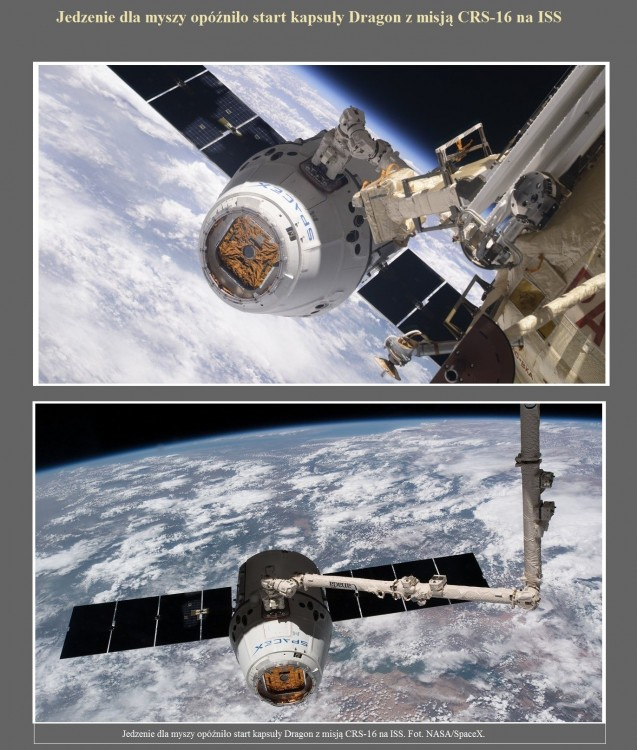 Jedzenie dla myszy opóźniło start kapsuły Dragon z misją CRS-16 na ISS.jpg