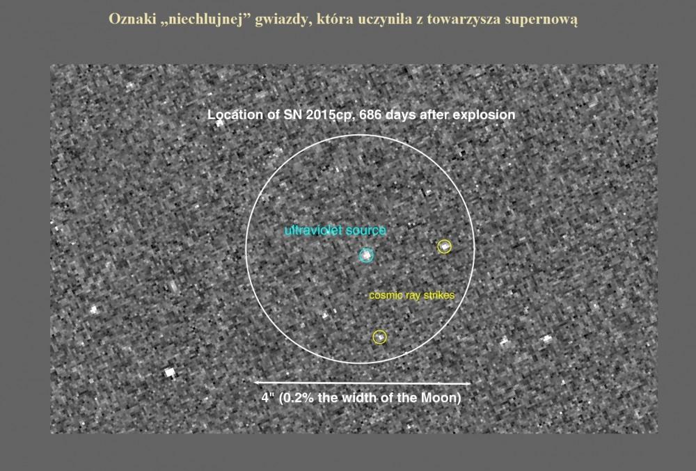 Oznaki niechlujnej gwiazdy, która uczyniła z towarzysza supernową.jpg