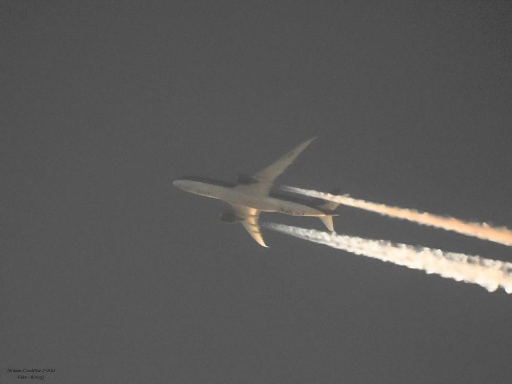 Boeing 787-8 Dreamliner.jpg