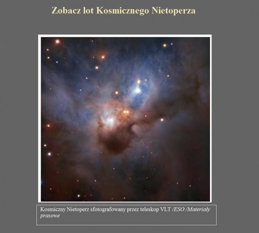 Zobacz lot Kosmicznego Nietoperza.jpg