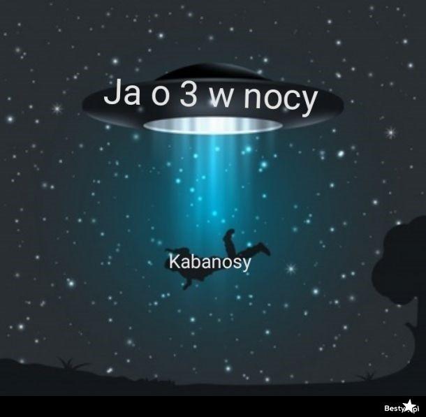 3986951.jpg