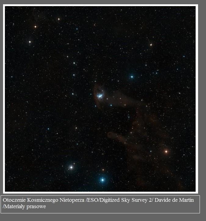 Zobacz lot Kosmicznego Nietoperza2.jpg