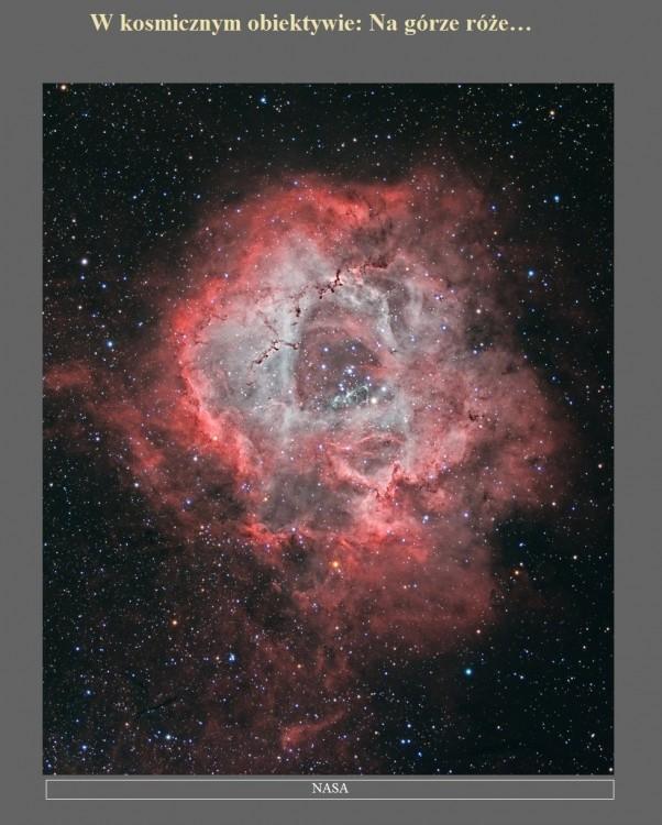 W kosmicznym obiektywie Na górze róże….jpg