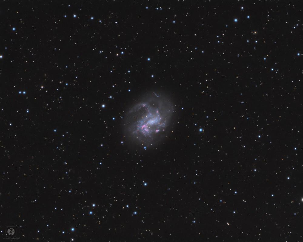 NGC4395-gotowe5.thumb.jpg.c096fa38da27e4b2dc0e0571eb3b27db.jpg