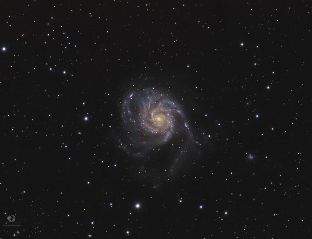 M101-gotowe3.thumb.jpg.74088543817b75dd9246966370fdeb64.jpg