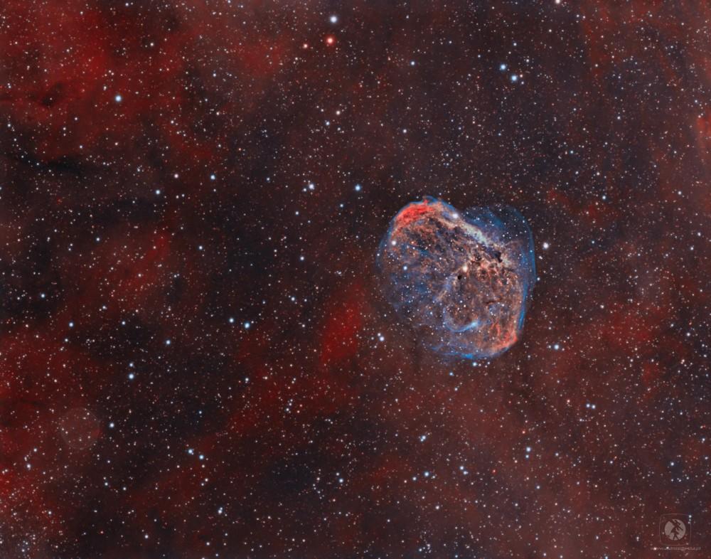 NGC6888.thumb.jpg.8f9b624fd935c40e3eb4ebd8b8587cc0.jpg