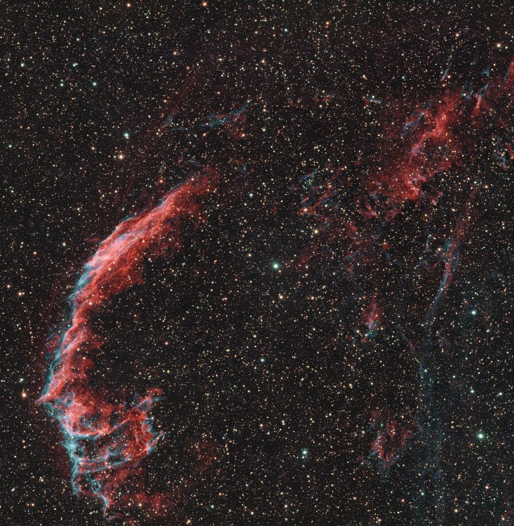 NGC6992_ver_h-denoise_crop.thumb.jpg.bf76f453869cd1eb3c4c98601bd384bc.jpg