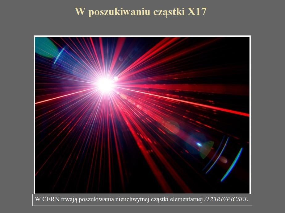 W poszukiwaniu cząstki X17.jpg