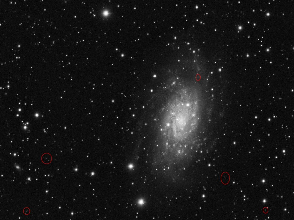 NGC2403_crop.thumb.jpg.495579ea0835207e5e8f24fb1ca3f408.jpg