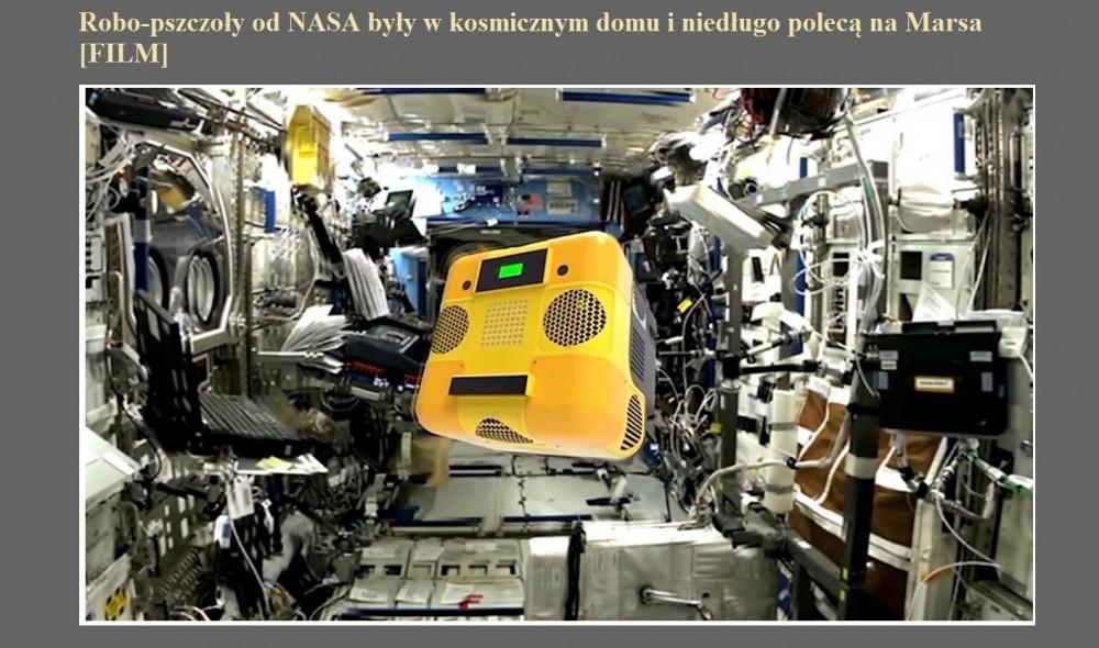 Robo-pszczoły od NASA były w kosmicznym domu i niedługo polecą na Marsa [FILM].jpg