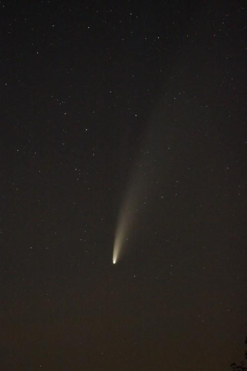 kometa.thumb.jpg.042019b2dc16bc745d4d79fe8f890a3b.jpg