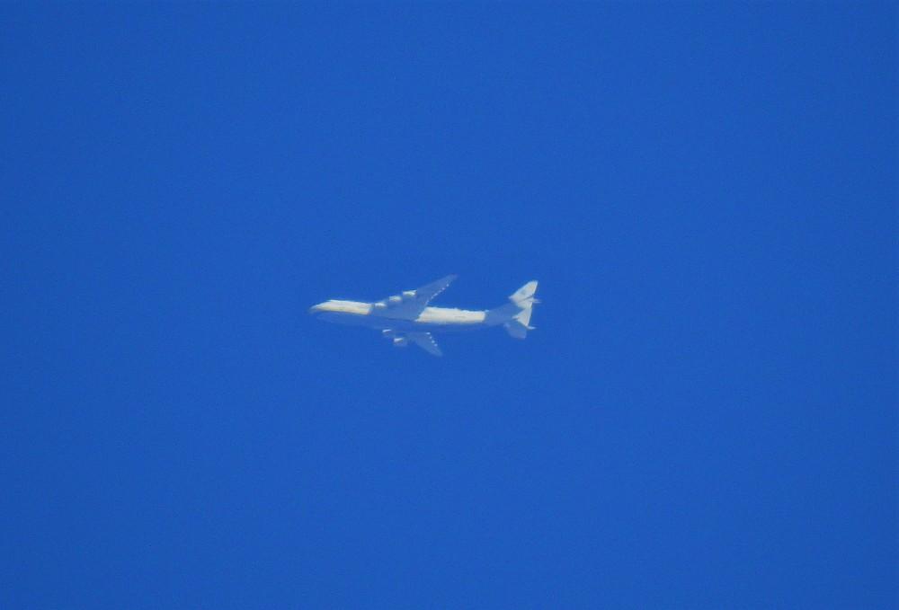 1126496494_2020-07-31-10-21-A225_UR-82060_AntonovAirlines(4).thumb.JPG.650bf9f6a508622703e80bd251221750.JPG