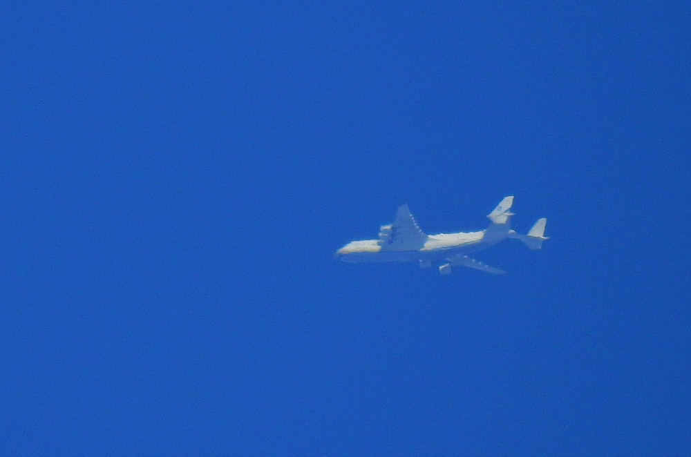 2086067772_2020-07-31-10-21-A225_UR-82060_AntonovAirlines(7).thumb.JPG.00ef603a4cc6498984412f983fafeabe.JPG