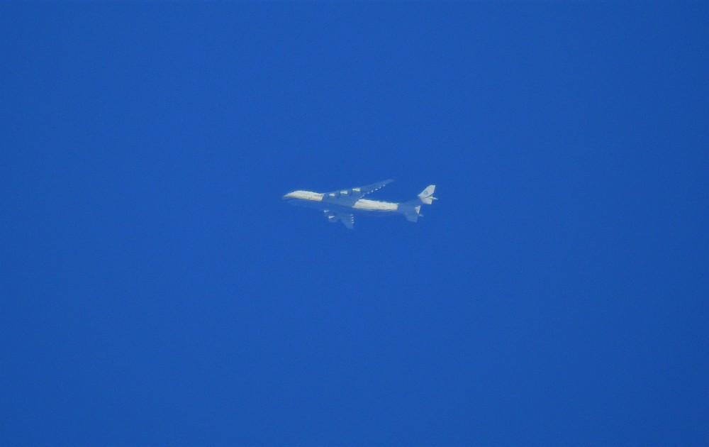 282307237_2020-07-31-10-21-A225_UR-82060_AntonovAirlines(2).thumb.JPG.45279b33fd712d45b998c67992662d3d.JPG
