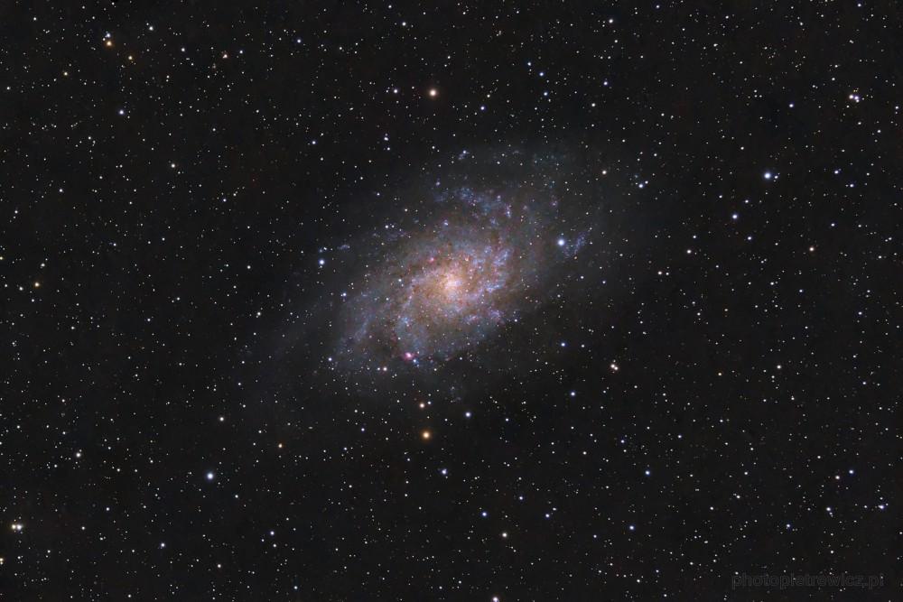 M33_RGB_v5_M.jpg.8dbd0587518f5fc2740718be348b9a17.thumb.jpg.4be5f5969bdcce368d0a0a93021c9ad7.jpg