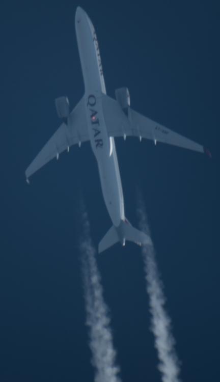467122611_samolot(1z1).thumb.jpg.bb9b67b7b6d40852daddfdf486e4af36.jpg