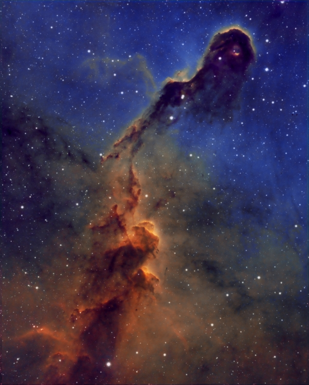 IC1396.thumb.jpg.8835a7835b4f2048d65c8ba7cd93116e.jpg