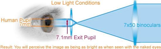 exit-pupil-eyes-optics-7x50-dark.jpg.fe813c54f5393a0ba8daae1a0a0a84a1.jpg