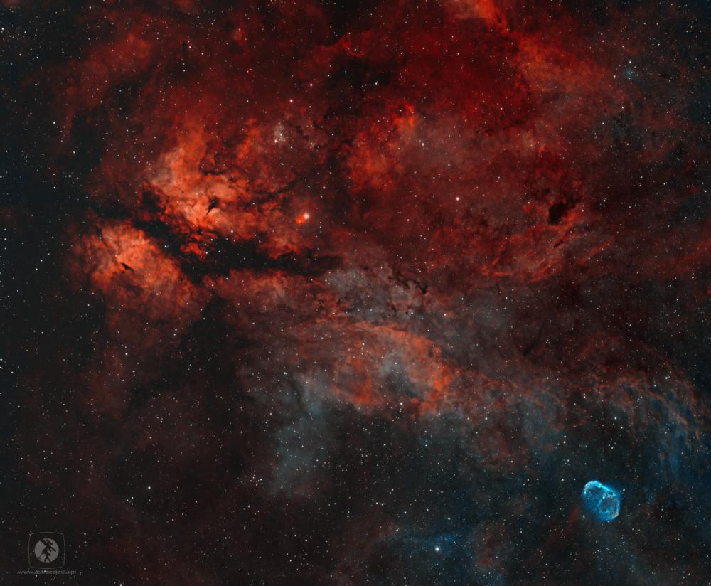 IC1318-HOO.thumb.jpg.158ea8016c7247cc1b66beb82685577e.jpg