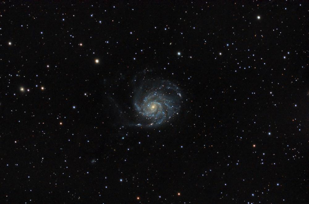 M101Final.thumb.jpg.3d1da9a8ac2ec1a56b450daeeabbcacb.jpg