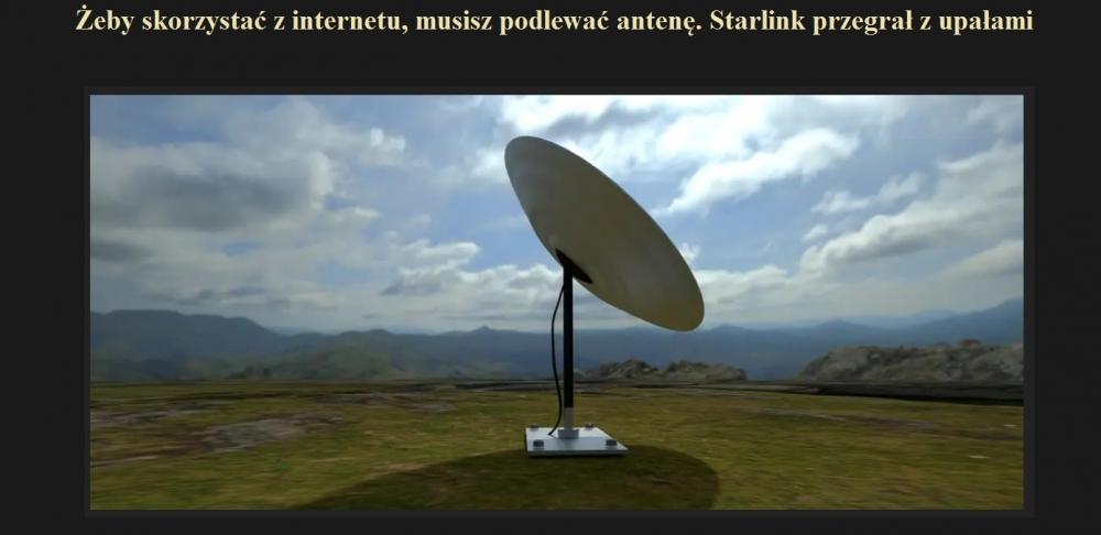 Żeby skorzystać z internetu, musisz podlewać antenę. Starlink przegrał z upałami.jpg