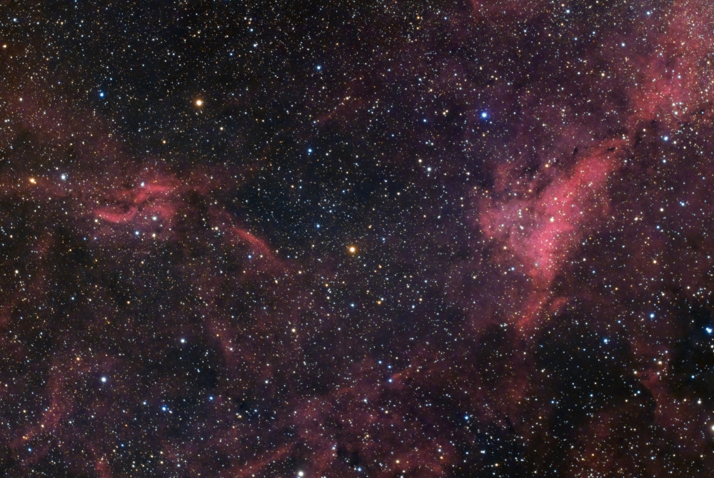 IC1318A-New-HaRGB.jpg.243d00992a6af28d55c6facb2dd9c31b.thumb.jpg.28740dd6187bb00817955073cf0d1303.jpg