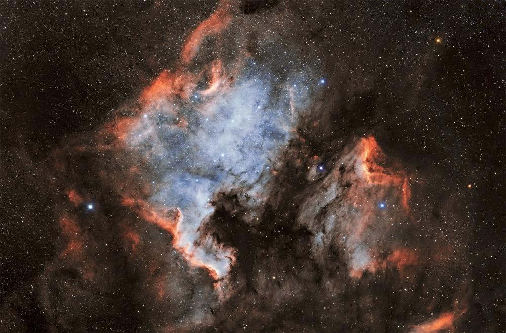 1737900876_NGC7000IC5070.thumb.jpg.7d47034ed696a47b453a5cc15549a771.jpg