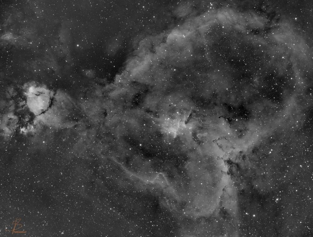 IC-1805.jpg
